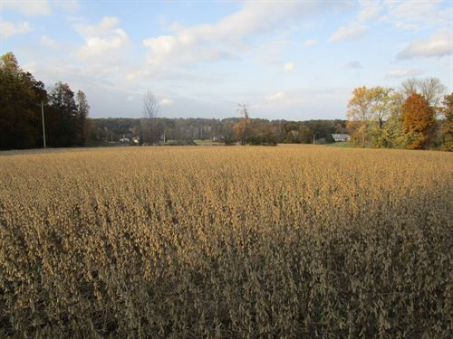 11.31Acres All Open Row Crop : Lavinia : Carroll County : Tennessee