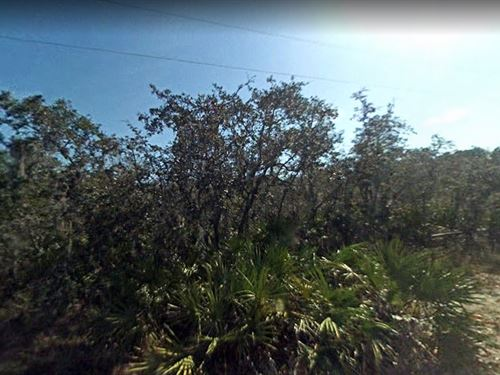 .23 Acres In Punta Gorda, FL : Punta Gorda : Charlotte County : Florida