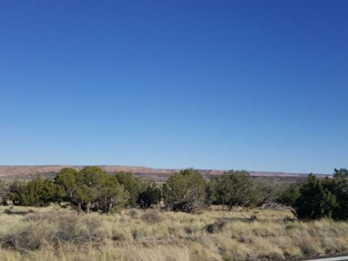 1.25 Acres In Saint Johns, AZ : Saint Johns : Apache County : Arizona