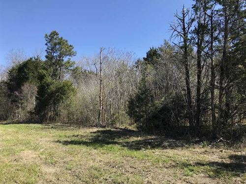 9.2 Acres Located Off Hwy. 80 in : Demopolis : Marengo County : Alabama