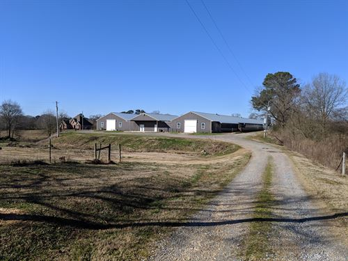 Circle B Farm : Holly Pond : Cullman County : Alabama