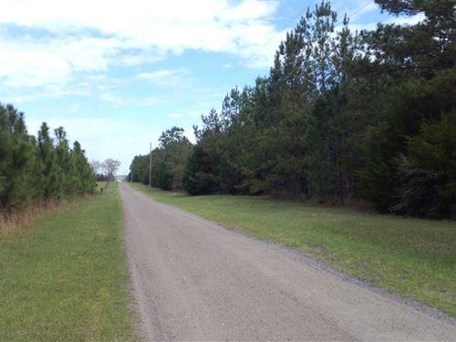 Martha Lane : Marianna : Jackson County : Florida