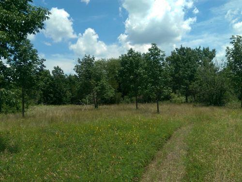 .1 Acres In Eustace, TX : Eustace : Henderson County : Texas