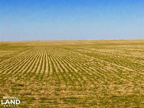 Farm Ground For Sale - Cheyenne Cou : Cheyenne Wells : Cheyenne County : Colorado