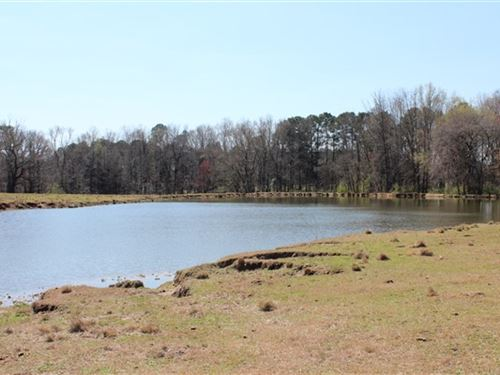 64 Acres, Chesterfield County, Sc : Chesterfield : South Carolina
