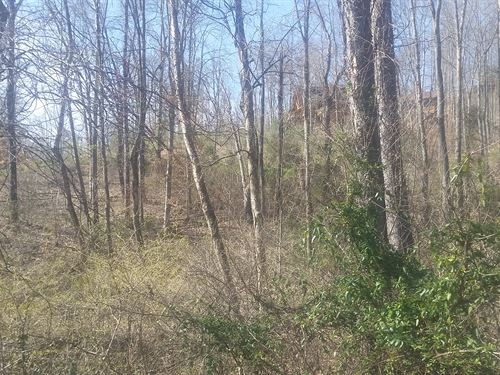 Lot With Breathtaking Views : New Tazewell : Claiborne County : Tennessee