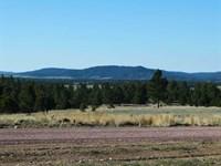 Lot 1 North Star : Hot Springs : Custer County : South Dakota