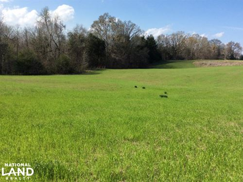 18 Ac, Mini Horse Farm,Hunting And : Bolton : Hinds County : Mississippi
