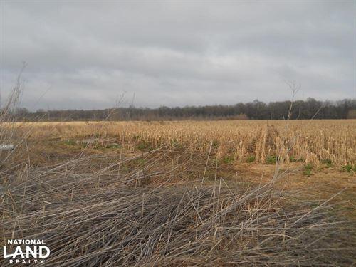 MS Delta Duck & Deer : Steiner : Sunflower County : Mississippi