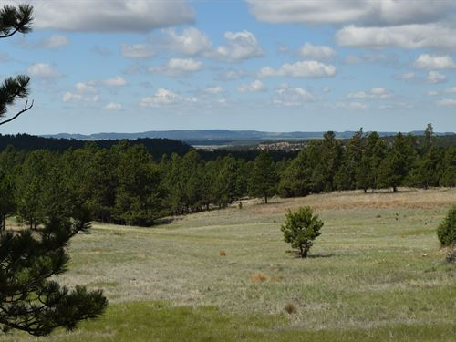 Eagle Nest Ii At Canyon Rim Ranch : Hot Springs : Custer County : South Dakota