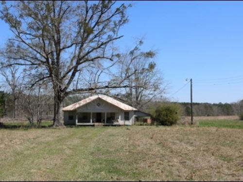 41 Acres In Leake County : Lena : Leake County : Mississippi