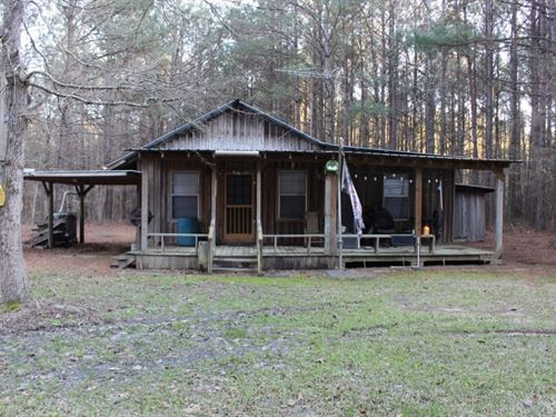 6 Acres In Jasper County, Ms : Louin : Jasper County : Mississippi