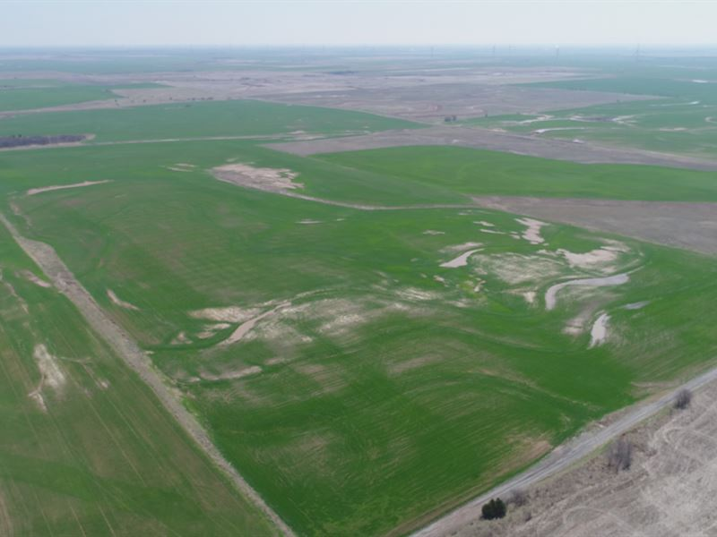 Cropland & Hunting Land : Billings : Grant County : Oklahoma