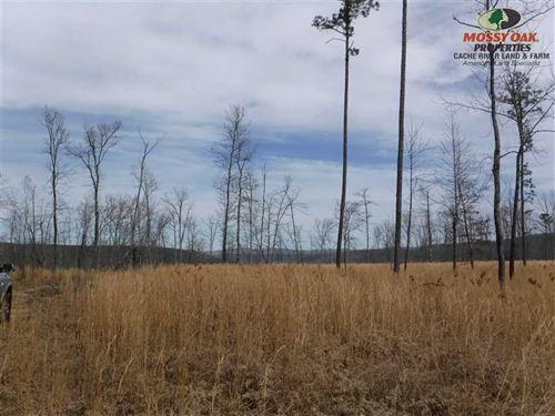 80 Acres of Recreational Land in : Crabtree : Van Buren County : Arkansas