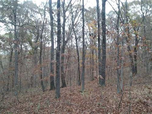 21.5 Acres Getaway In Morgan Count : Stover : Morgan County : Missouri