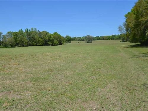 10, 70 Acre Lots 7 Miles From Down : Prattville : Autauga County : Alabama