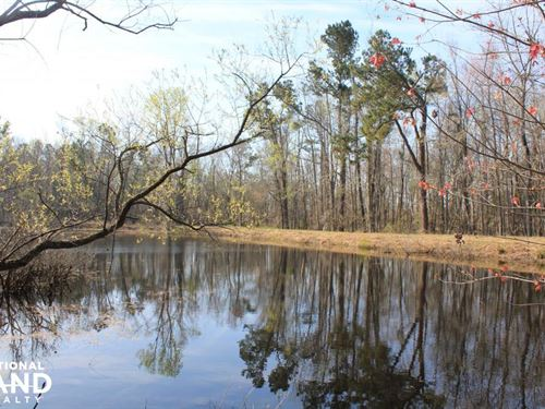 Old Santee Canal 63 Acres : Pineville : Berkeley County : South Carolina
