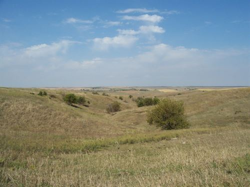 Howard County Range And Dryland : Palmer : Howard County : Nebraska