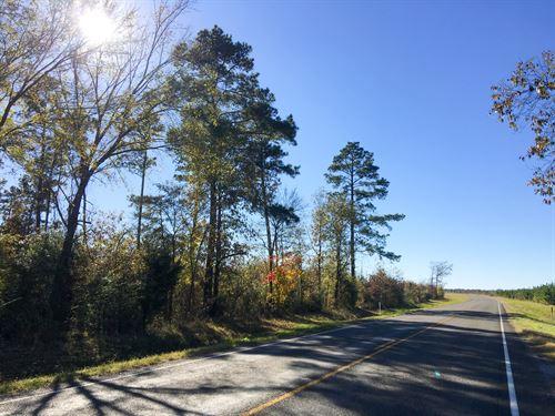 89 Acres Fm 2262 : Trevat : Trinity County : Texas