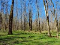 Timber, Home, & Pond : Greensboro : Greene County : Georgia