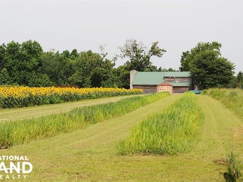 Buck Creek Estate : Latta : Dillon County : South Carolina