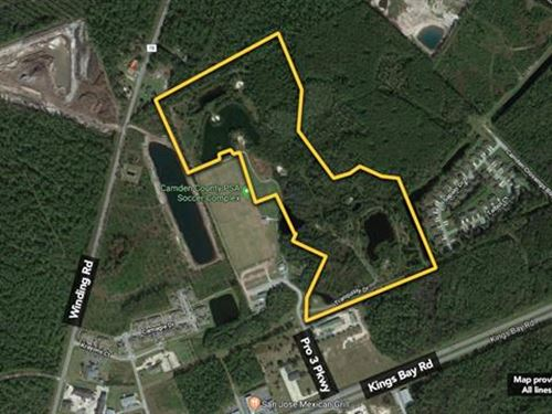 Land. Approx 47.29Ac Lot : St. Marys : Camden County : Georgia