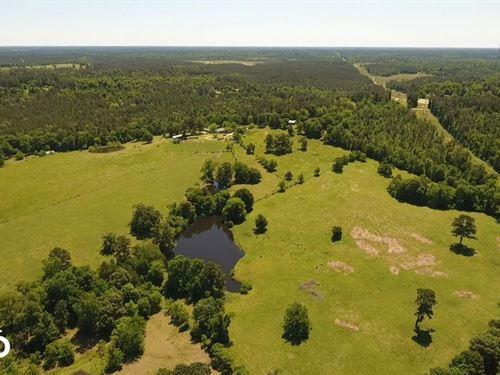 Rockin' Double R Ranch : Livingston : Polk County : Texas