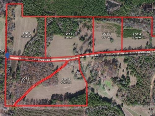 6.5 Acres In Webster County Lot 3 : Cumberland : Webster County : Mississippi