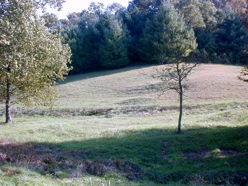 12.45 Acres In Blue Ridge Mountains : Independence : Grayson County : Virginia