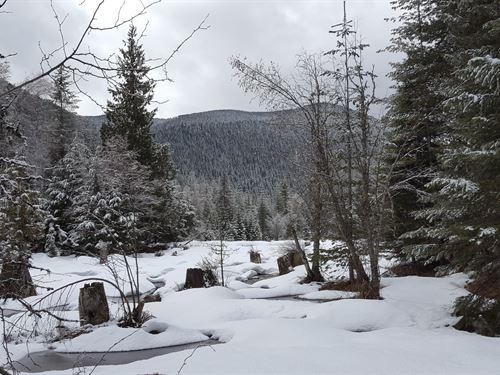 Clark Fork Solitude : Clark Fork : Bonner County : Idaho