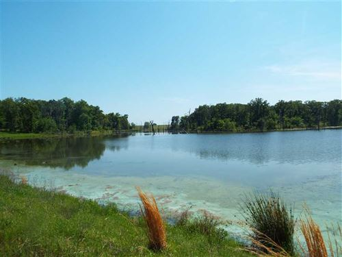 240 Acres Prime Pasture With 19 Ac : Boswell : Bryan County : Oklahoma