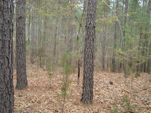 11.5 Acres - Fairfield County, Sc : Winnsboro : Fairfield County : South Carolina