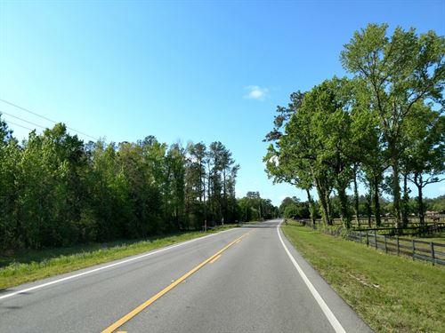 Ft. McCoy Farms - 31 Acres : Fort Mc Coy : Marion County : Florida