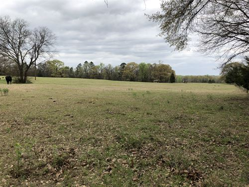 46+ Acres Titus County : Cookville : Titus County : Texas