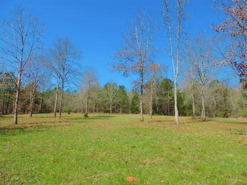 Creek Frontage & Hardwood : Greensboro : Greene County : Georgia