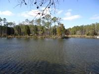 Peninsula Shaped Waterfront Site : Aurora : Beaufort County : North Carolina