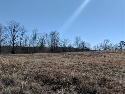 5.1+/- Acres Of Open Pasture Land : Fort Payne : DeKalb County : Alabama