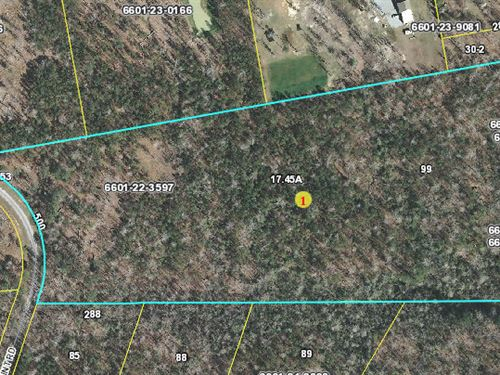 17.45 Acre Wooded Property : Chocowinity : Beaufort County : North Carolina