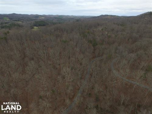 Laurel Branch Road Acreage : Madisonville : Monroe County : Tennessee