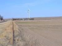 Rowan Pasture & Dryland, Logan : Fleming : Logan County : Colorado