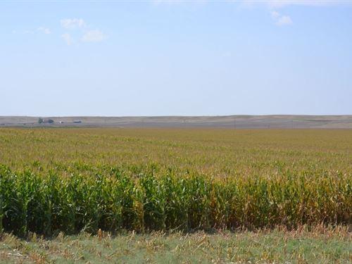 Madden Pivot Irrigated, Pasture &Am : Bushnell : Kimball County : Nebraska