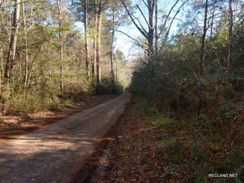 34 Ac, Pine Timberland With Home : Newton : Texas