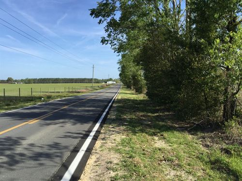 40 Acres On Paved Road : Live Oak : Suwannee County : Florida