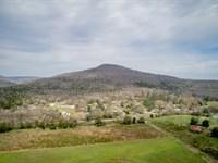 Green Top - A Duck Hunter's Dream : Stevenson : Jackson County : Alabama
