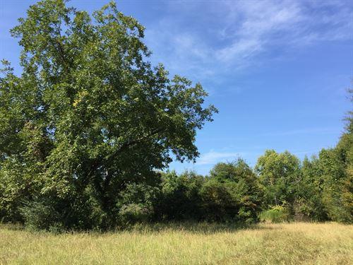 Pratt Tract : Morven : Anson County : North Carolina
