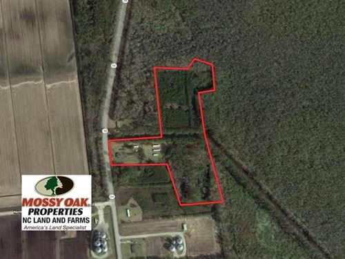 Under Contract, 14.24 Acres of Cr : Fairfield : Tyrrell County : North Carolina