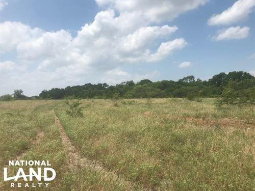 223 Acre Lake Tawakoni Property Mus : Wills Point : Van Zandt County : Texas