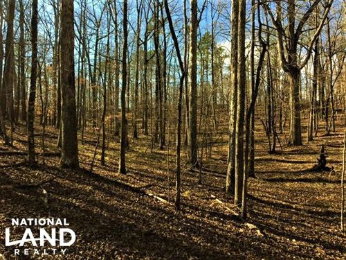 Chelsea Wooded Homesite : Chelsea : Shelby County : Alabama