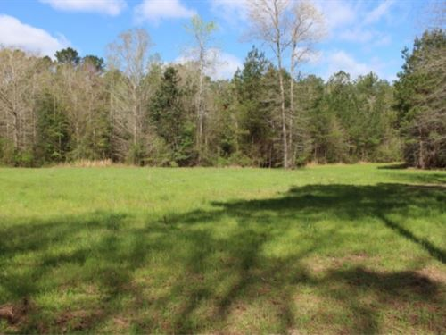 110 Acres In Pearl River County, Ms : Poplarville : Pearl River County : Mississippi