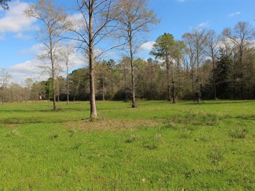 140 Acres In Pearl River County, Ms : Poplarville : Pearl River County : Mississippi